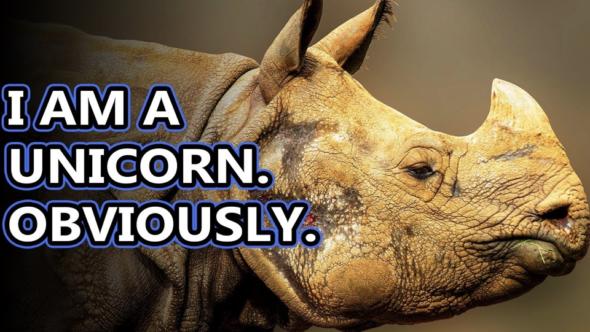 Open Topics, Call-Ins, Free Unicorns & Okay No Free Unicorns.